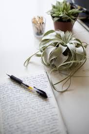 collaborative writing // écriture collaborative